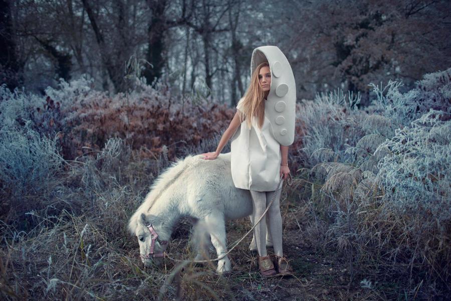 Wonderland by tomislav-moze