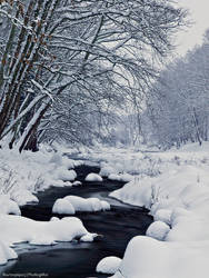 Snowy River by photogrifos