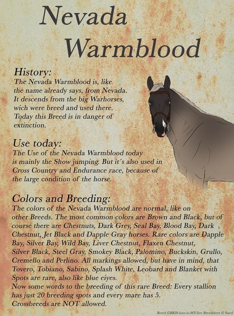 Nevada Warmblood Breedheet (engl) by Saerl