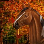 .:Autumn is here:. (Videodraw) Gift Art