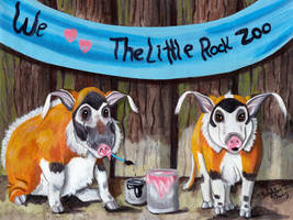 I Love The Little Rock Zoo - Red River Hogs