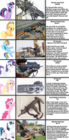 If the Mane Six (And More) went Gun Shopping...