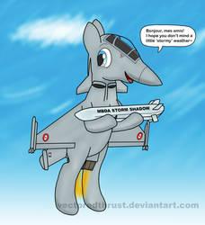 Plane Ponies - Dassault Rafale