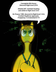 The mind of an Air Traffic Controller
