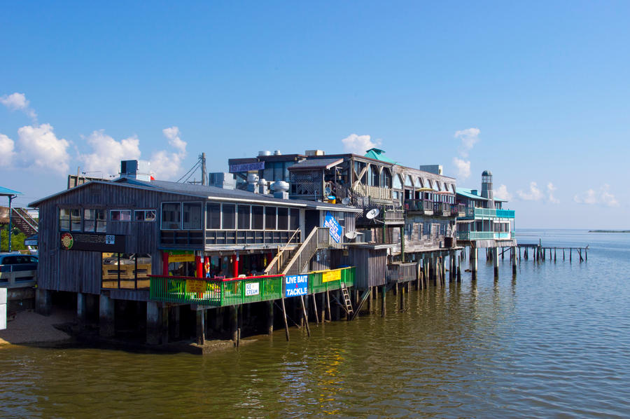 cedar key chat Contact: cedarkeyartsfestival@gmailcom 352-543-5400 www  i chat with  mike, and just happened to mention that i'm looking for the right item to buy with.