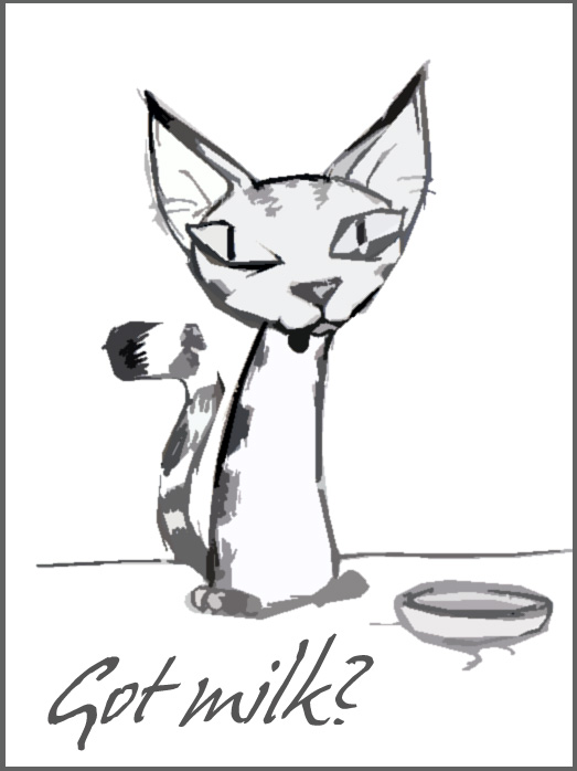Kitty cat by schwarzdrossel