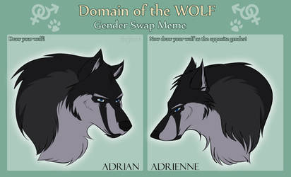 DotW Meme: Adrian's Gender Swap by Halkuonn