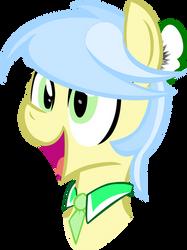 designer pony vector