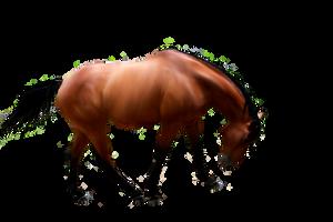 Precut horse by JayJayBitezYew