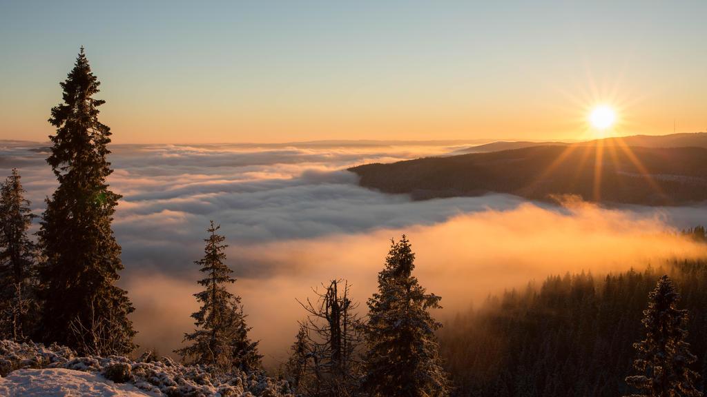 The fog setting over Oslo