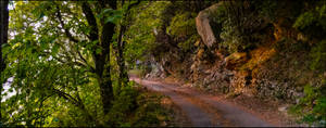 Old Mountain Roads