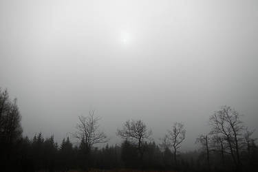 Solar eclipse behind fog
