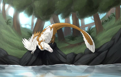 PE - Tailchaser's Lure