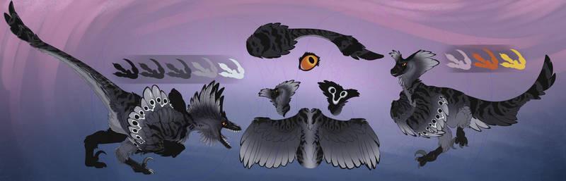 Commission: Raptor Ref