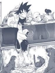 Dragon Ball_ Zoo
