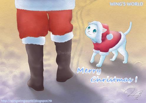 Cat and Santa Claus