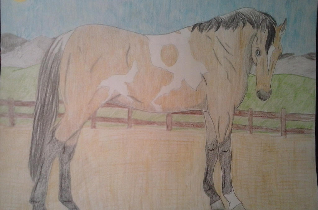 GR Ahote by horsegirl121