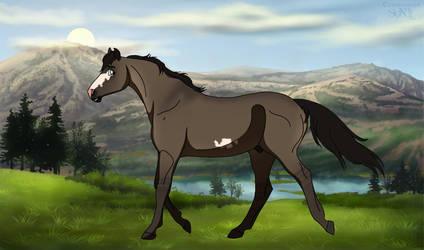 DIRPG | Silas | Lead Stallion