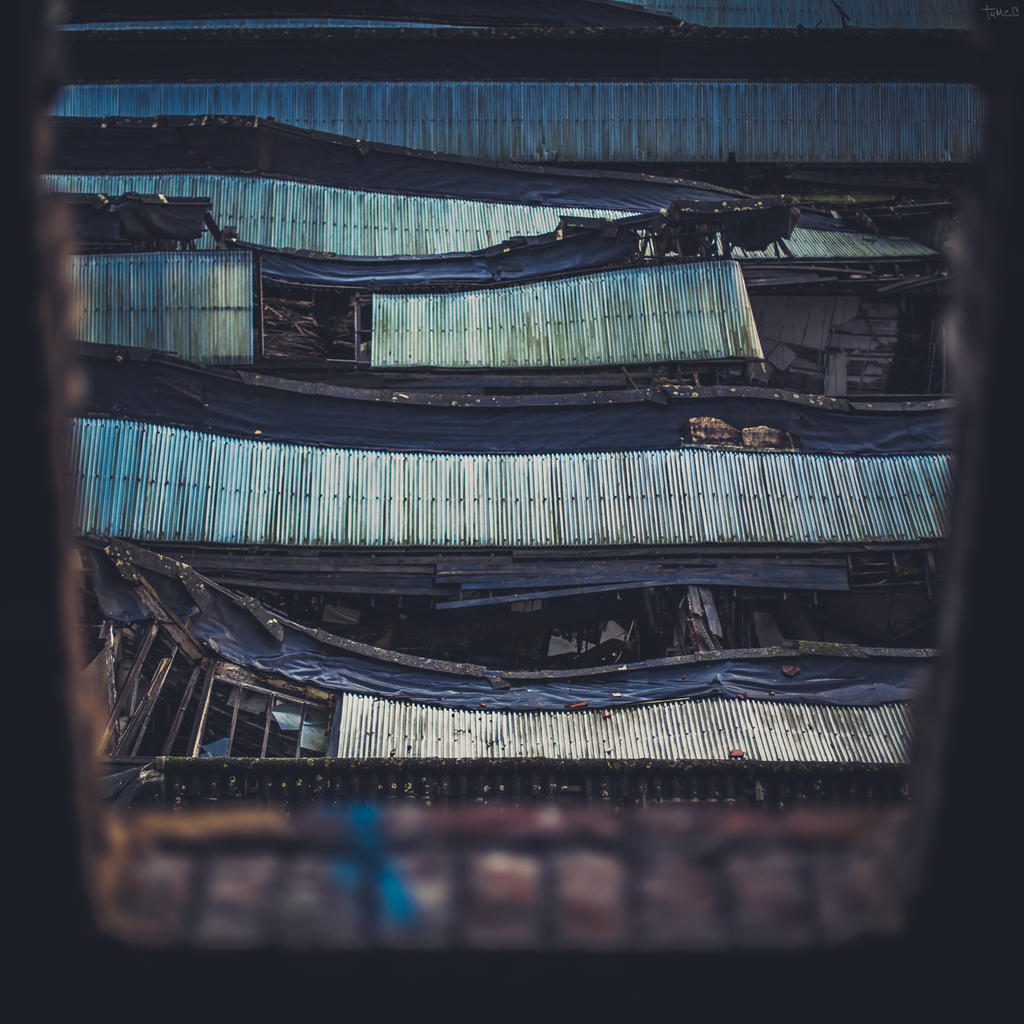 Roofed by TumcC