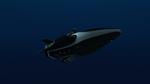 Daz simon 3D Orca 5 by anthsco
