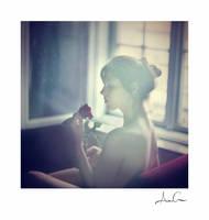 window4 by AncaCernoschi