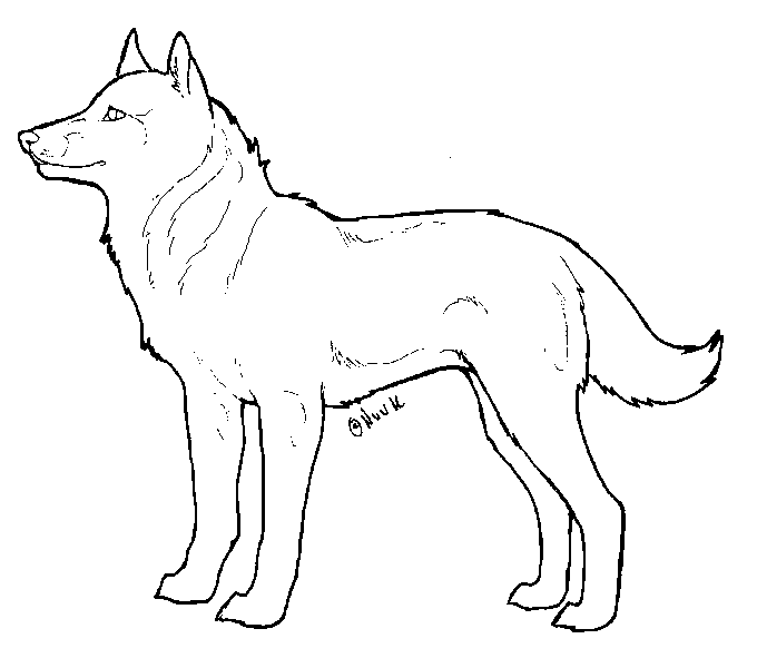 Line Drawing Of Dog : Dog lineart by nuuuk on deviantart