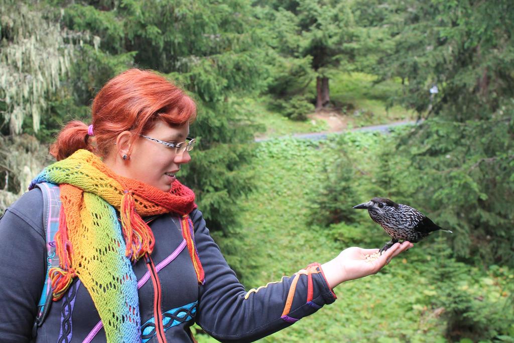 A hungry bird by dark-columbia