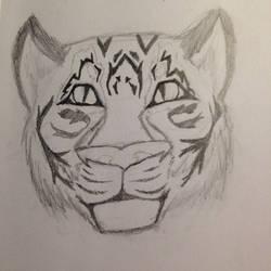 Tiger Sketch (Practice) + Mini-Update