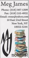 Novelist Business Card V