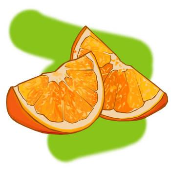 Citrus Study - Orange by floweringgarlic