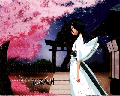Kuchiki Rukia by Gabriellahalima