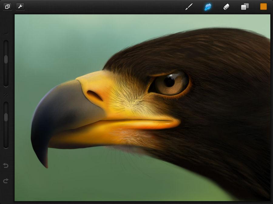 Procreate Eagle by JamesCuda