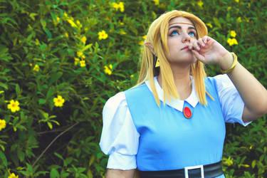 Zelda Cosplay by Anabuhf