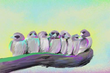 Project6 Birds 3