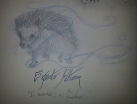 Hedgehog Patronus