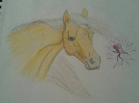 Pony and Fairy