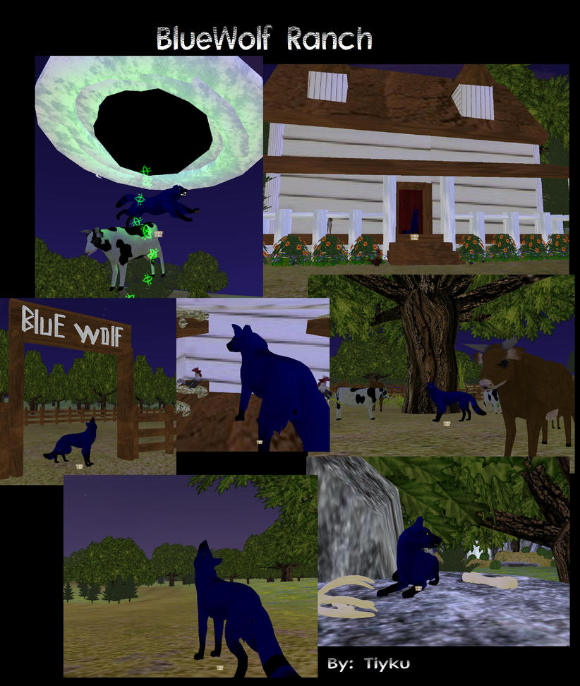 BlueWolf Ranch by Tiyku