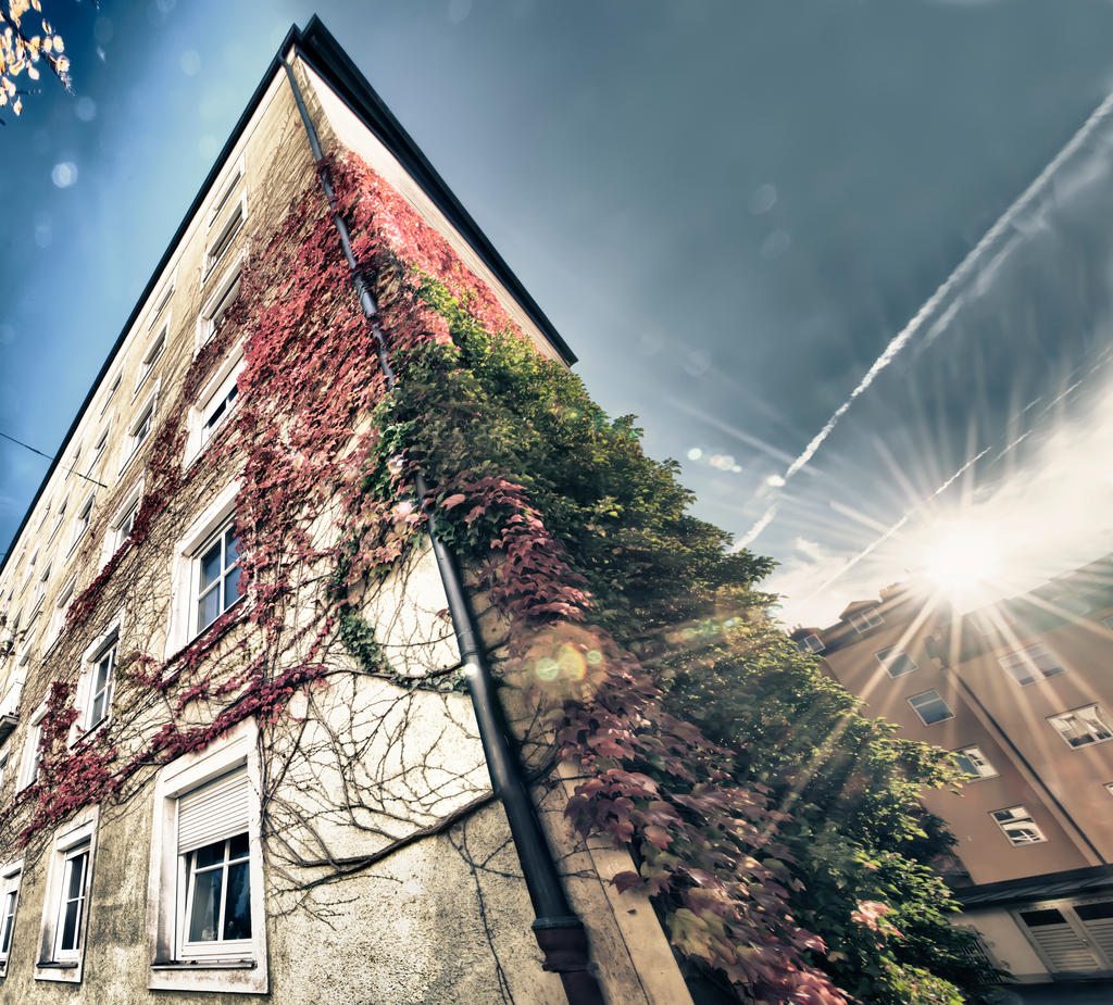 Vine Covered Appartments Hdr By Creative Dragon On Deviantart