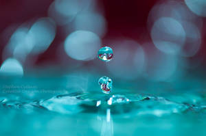 Blue and Red Drops by Creative--Dragon