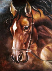 Horse Portrait WIP 2 by Lilia-DeRosso