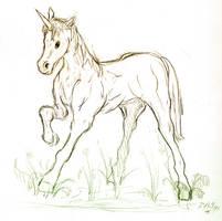 Unocorn Pony by reversenorm