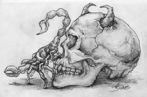 Devil's Skull and Scorpion by SarembaArt