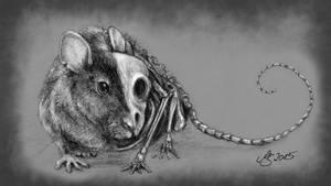 Rat - Skull And Bones by SarembaArt