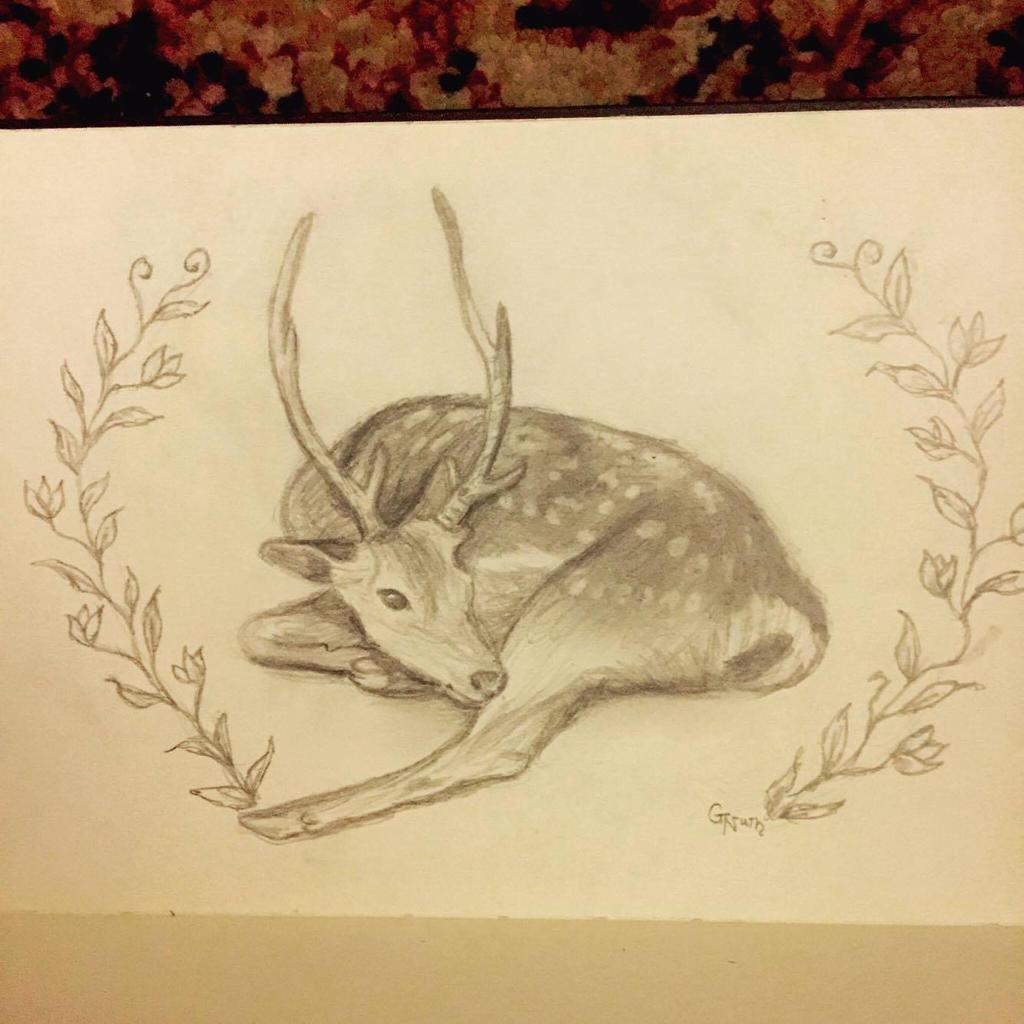 Sketchbook Fallow Deer by Sidhe-Etain
