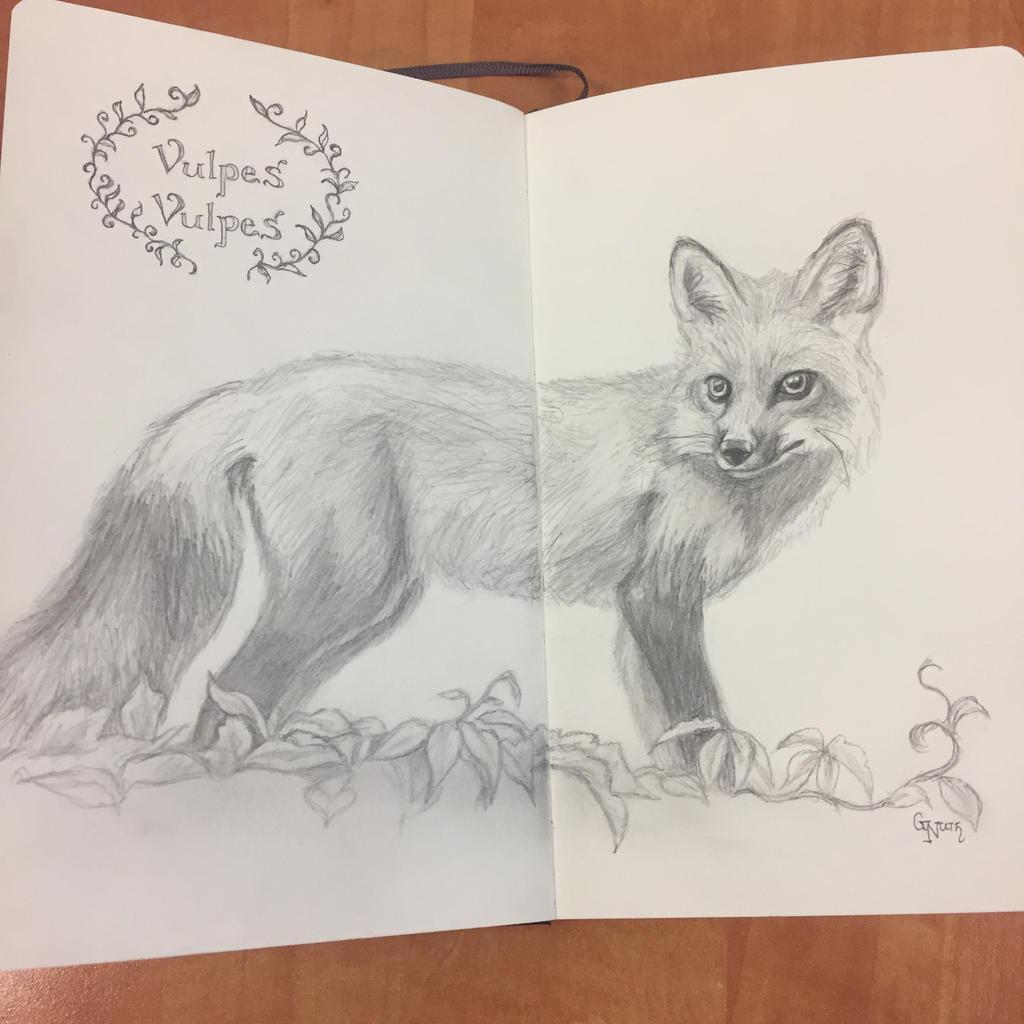 Ena the Fox by Sidhe-Etain