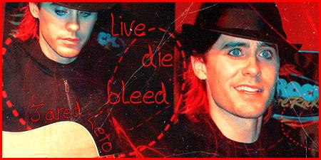 live_die_bleed by o0lyla0o