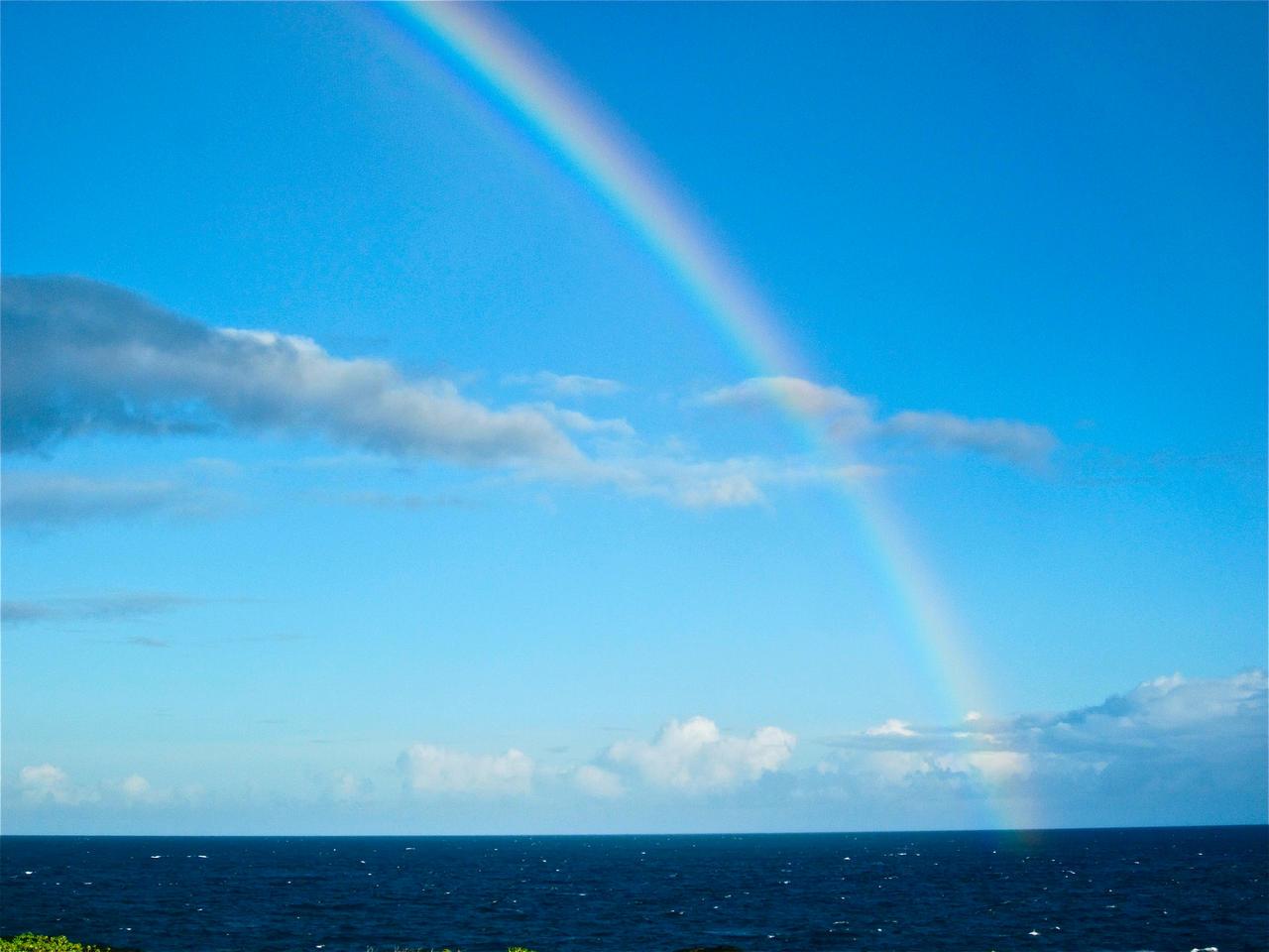 rainbow by tomboyrulez99