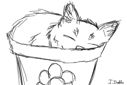 Kitten in a flowerpot (sketch) by ImmyWimmy1