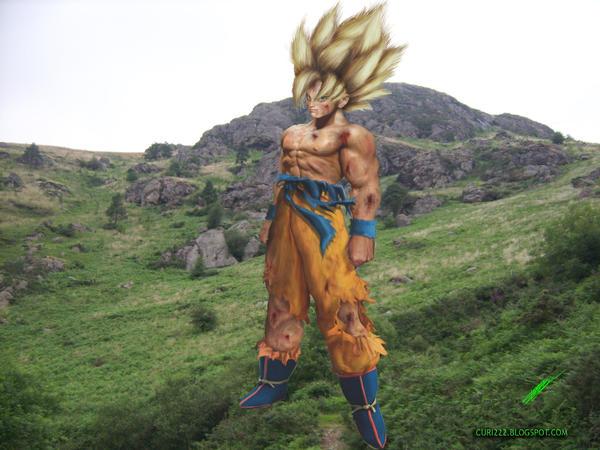 http://fc08.deviantart.net/fs38/i/2008/365/8/2/Papiel_Son_Goku_Sayan_2_by_curi222.jpg