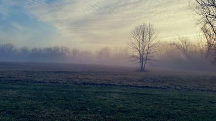 Foggy Morning by Shiovra